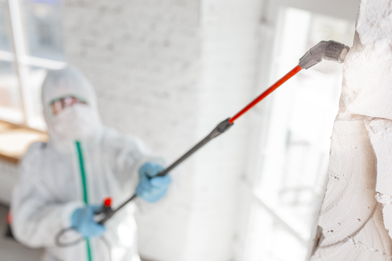 Professional Electrostatic Sprayer