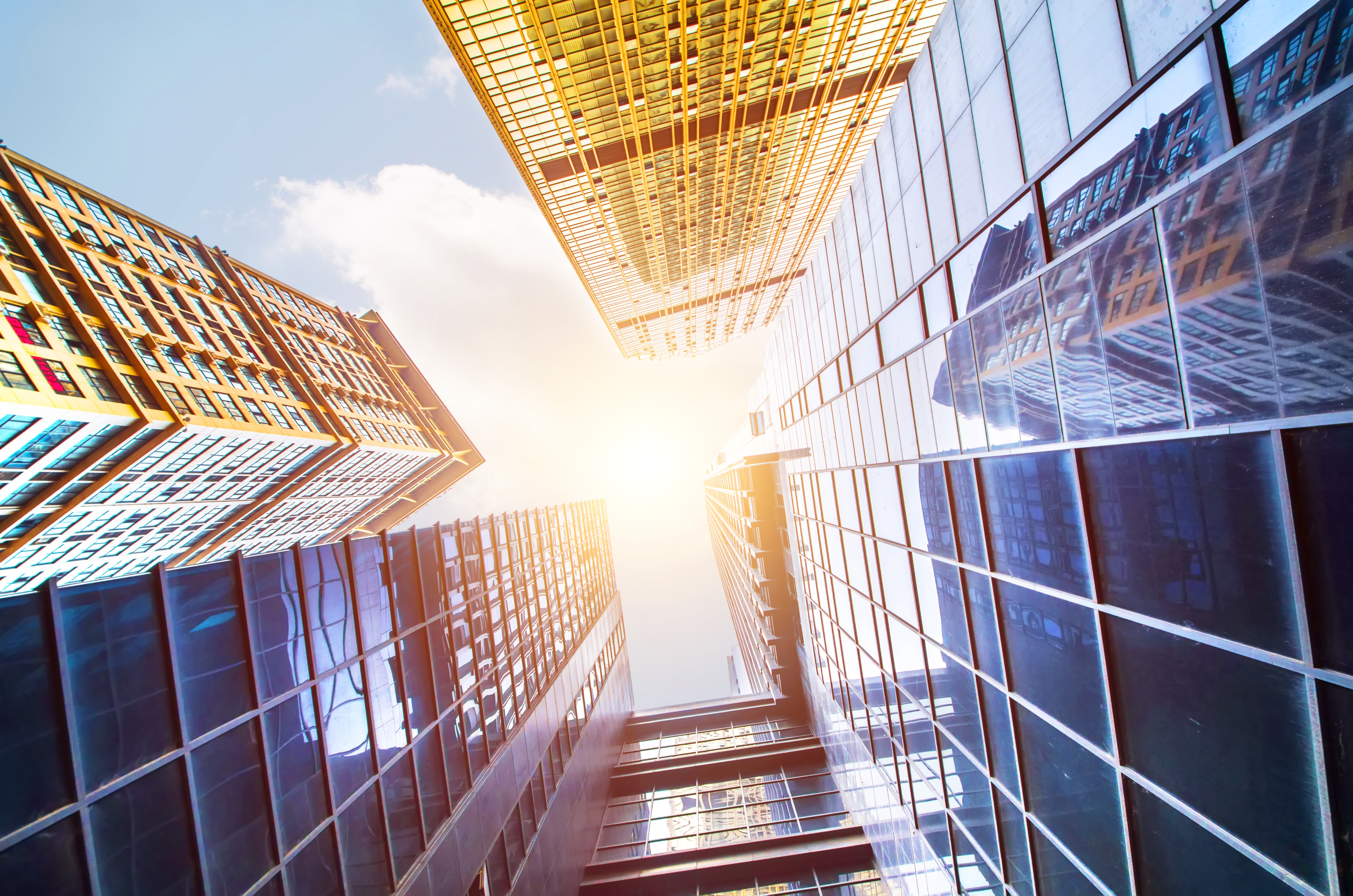 Why Soft FM Services Are Essential For Large Buildings